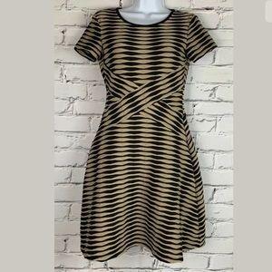 Ann Taylor LOFT Women's Brown & Black Dress Size 2
